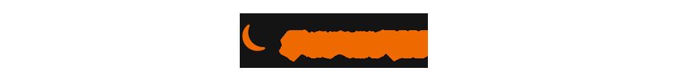 topspin_logo